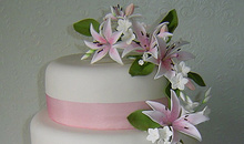 Gloucestershire Wedding & Parties Cake Makers - Sugar Celebrations Ltd