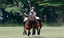 Gloucestershire Places to Visit Sporting Venues - Cirencester Park Polo Club