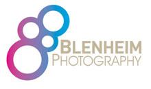 Gloucestershire Wedding & Parties Wedding Photographers - Blenheim Photography