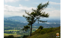 Gloucestershire Places to Visit Outdoor - Crickley Hill Country Park