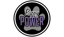 Gloucestershire Services Animal Care - Puppy Power Training