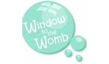 Gloucestershire Services Health - Window to the Womb Gloucester