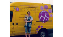 Gloucestershire Services Animal Care - Cotswold Dog Spa