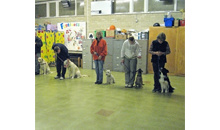 Gloucestershire Services Animal Care - Brockworth Puppy & Dog Training Club