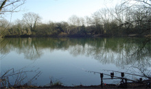 Gloucestershire Leisure Fishing & Angling Clubs - Whelford Pools Fishery