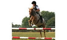 Gloucestershire Leisure Horse Riding - Barton End Stables