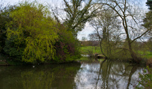 Gloucestershire Leisure Fishing & Angling Clubs - Fishing at Pittville Park