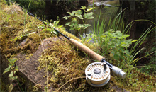 Gloucestershire Leisure Fishing & Angling Clubs - Gloucester Angling Club