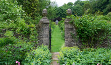 Gloucestershire Places to Visit Gardens & Aboretums - Cerney House Gardens
