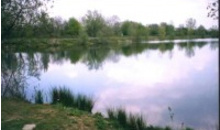Gloucestershire Leisure Fishing & Angling Clubs - South Cerney Angling Club