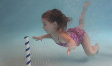 Gloucestershire Leisure Preschool Activities - Little Dolphins